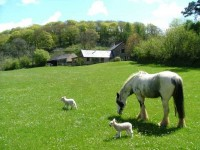 Image for Riscombe Farm Holiday Cottages